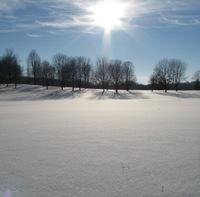 Sun-streaked winterscape